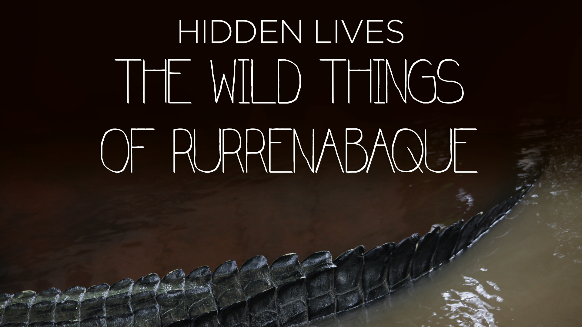 'Hidden Lives: The Wild Things of Rurrenabaque'-Film Cover